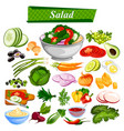 food and spice ingredient for healthy salad vector image