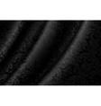 Black Luxury Background vector image vector image