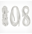 Coils of rope on white vector image vector image