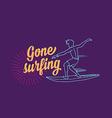 Surf surfboard icon banner surfer vector image