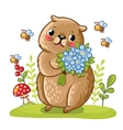 a gopher and bees vector image