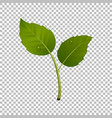 green sprout design element vector image