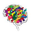 bright brain success concept smart idea icon vector image
