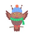 closeup of brown sitting owl vector image