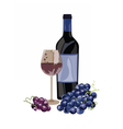 Bottle of Red white and a glass vector image
