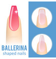 nail shape ballerina vector image