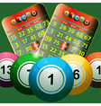 new bingo cards and bingo balls on green vector image vector image