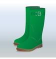 green gumboots vector image