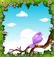 Purple bird on the branch vector image
