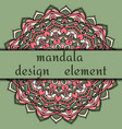 unusual design element beautiful floral mandala vector image