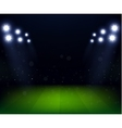 Football Stadium at night with spotlight vector image vector image