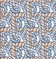 Engraved rope with swirls vector image