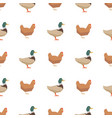 ducks and chickens seamless pattern vector image