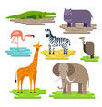 set of african animals on the pieces of land vector image
