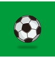 soccer ball on green background vector image