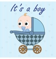 Baby boy in baby carriage vector image