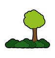 isolated tree design vector image