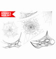 spiderweb or spider web cobweb 3d shapes vector image