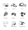 Seeds and nuts monochrome icons vector image