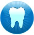 Icon Tooth vector image vector image