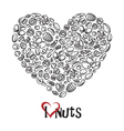 nuts icon as heart vector image