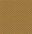 Pineapple texture vector image
