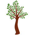 elm tree vector image
