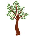 elm tree vector image