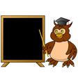 Wise owl teacher with blackboard vector image