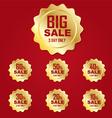 Icon gold big sale label or tag vector image vector image