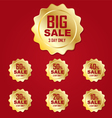 Icon gold big sale label or tag vector image