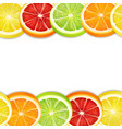 citrus fruits slices seamless horizontal pattern vector image