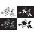 drawing flower rose vector image