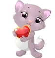Beautiful gray kitten with heart vector image