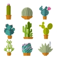 collection of cactus in flat style vector image vector image