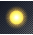 yellow sun with rays vector image