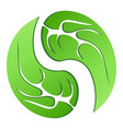 leaf cycle symbol vector image