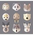 Animal portrait flat icon set vector image