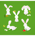 Cute bunnies vector image