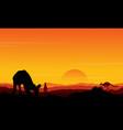 Silhouette kangaroo at sunset scenery vector image