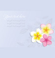 Background with Plumeria Flowers vector image