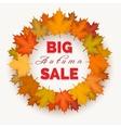 Big autumn sale wreath label vector image