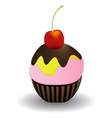 cake with cherry vector image