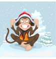 Monkey is sitting on snow and puts cap of Santa vector image