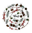 branches from forestpine cones and acorns vector image