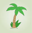 sketch of the palm tree vector image