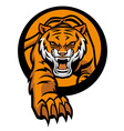 Tiger mascot come out from circle vector image