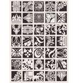 ornate design elements vector image