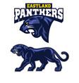Black panther mascot vector image