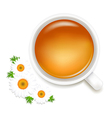 Herbal Tea With Camomile vector image vector image